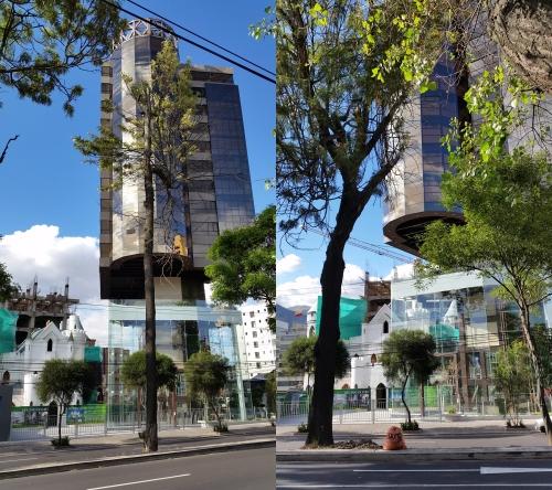 Quito post modern